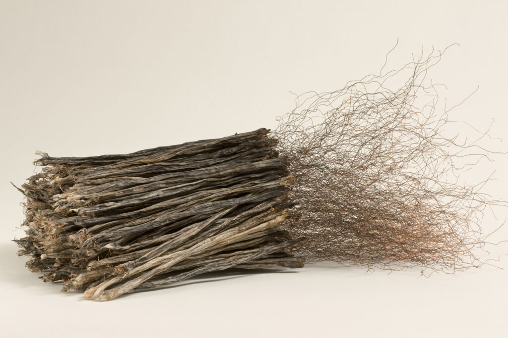Remains II #1: string, copper wire, paper, rice paste, pigments, fire, water